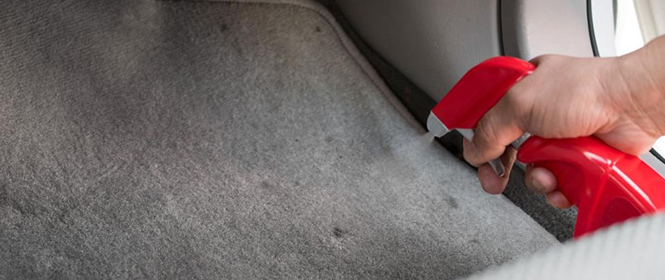 interior_carpet1