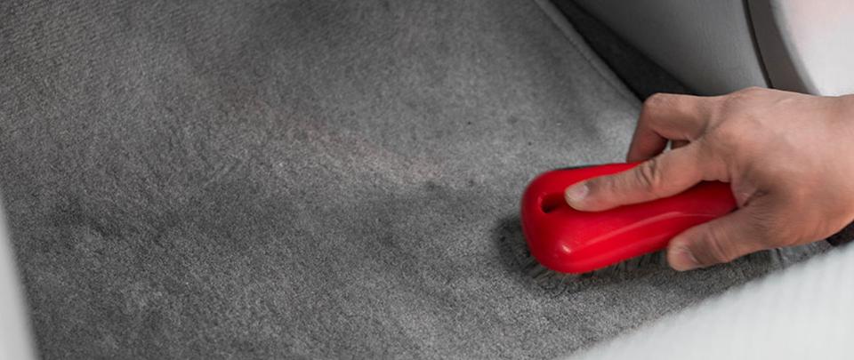 interior_carpet2